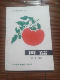 番茄(广州蔬菜栽培小丛书)