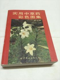 實用中草藥彩色圖集 第七冊