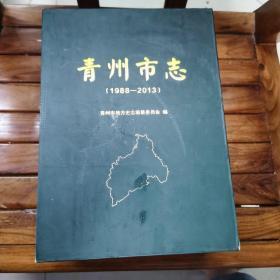 青州市志 (上、下全两册)