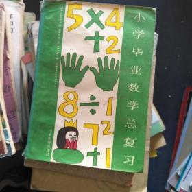 小学毕业数学总复习