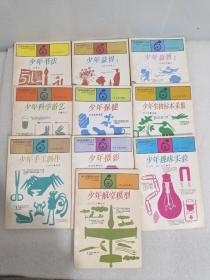 快乐的星期六丛书(全套10册合售):少年书法、少年航空模型、少年科学游艺、少年趣味实验、少年手工制作、少年生物标本采集、少年益智(1/2)、少年保健、少年摄影