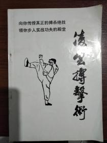 凌云搏击术——传授真正的搏杀绝技、实战功夫