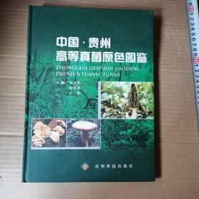 中国·贵州高等真菌原色图鉴
