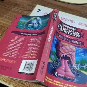鸡皮疙瘩系列丛书:冰湖惊梦·红魔肉团(升级版)