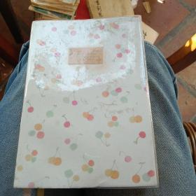 32k淡彩胶套手记(日记本)有笔记(字漂亮如印刷)