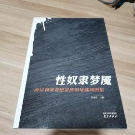 性奴隶梦魇(南京 利济 巷慰 安所旧址陈列图集)内页干净
