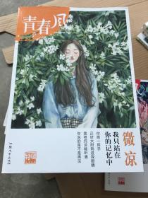 青春风特辑2 微凉(年刊)疯狂阅读 校园文学(新版)--天星教育