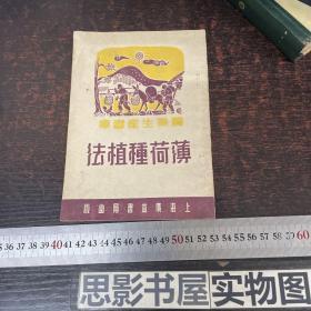 精美装帧 51年上海广益书局初版 《薄荷种植法》【稀有图书】