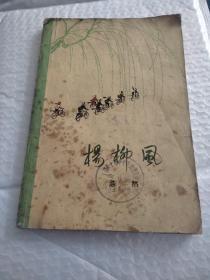 杨柳风(彩色插图)