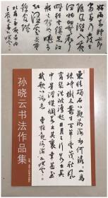 孙晓云书法作品一幅,软片,配作品出版物画册,尺寸132x66cm