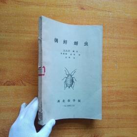 朝鲜蚜虫(油印本)【馆藏】