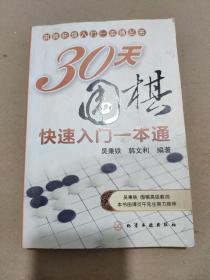 棋牌快速入门一本通丛书:30天围棋快速入门一本通