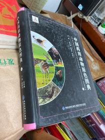 中国药物动物原色图典 上