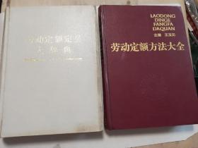 劳动定额方法大全 劳动定额定员大辞典 二本合售