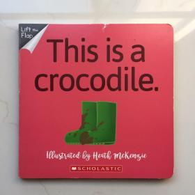 No way 系列 No Way! This Is A Crocodile 不可能! 这是一条鳄鱼 英文原版 儿童英语启蒙纸板翻翻书 纸板书