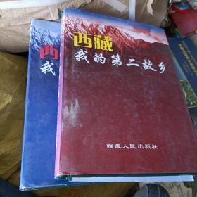 西藏我的第二故乡上下册