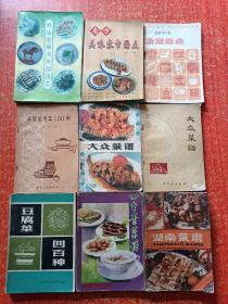9册合售:湖南菜谱、四季素菜谱、大众菜谱、豆腐菜四百种、大众菜谱、家庭常用菜一百例、家常面点、南方美味家常面点、新法食雕与拼摆技艺