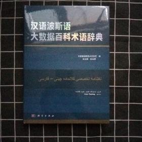 汉语波斯语大数据百科术语辞典(正版现货)