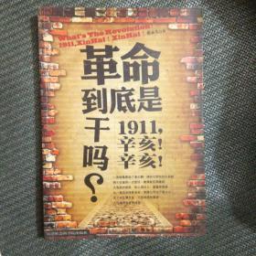 革命到底是干吗?:1911,辛亥!辛亥!