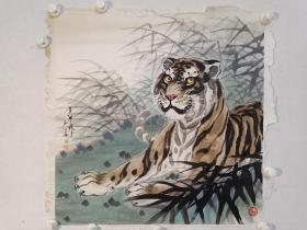 保真书画,一代画虎大家,姚少华1987年四平尺斗方画虎佳作《卧虎藏龙》一幅68.5×68.5cm,纸本托片。