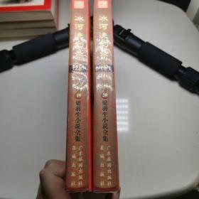 冰河洗剑录(上下)两册合售
