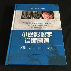 小肠影像学诊断图谱:X线、CT、MRI、内镜