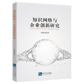 知识网络与企业创新研究