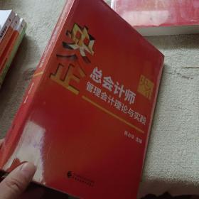 央企总会计师管理会计理论与实践