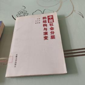 中国社会分层的结构与演变