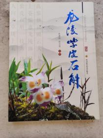 现货:龙陵紫皮石斛
