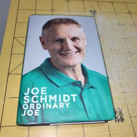JOE SCHMIDT ORDINARY JOE