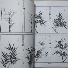 【复印件】竹谱 元 李衎撰