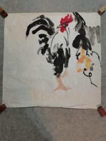无款国画公鸡 四尺斗方画心软片 手绘原稿