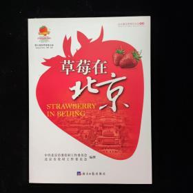 草莓在北京 一版一印