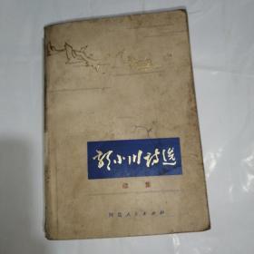 郭小川诗选续集