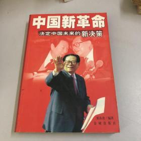 中国新革命:决定中国未来的新决策