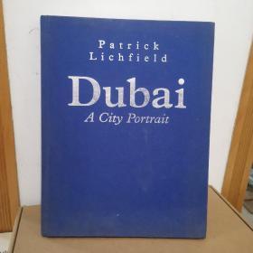 Dubai A City Portrait
