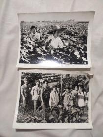 黑白照片两张(凌源地区)