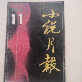 小说月报  1996.11