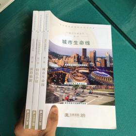 华高莱斯智库系列丛书:城市生命线/前沿旅游/特色小镇 (塑封95品)