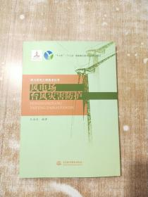 风电场台风灾害防护(风力发电工程技术丛书)【库存书,一版一次印刷】