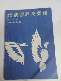 信鸽驯养与竞争