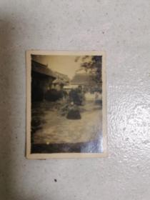 商邱县立女子中学校园风景照片