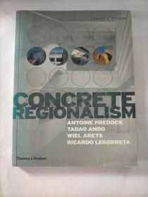 固化的地方主义 Concrete Regionalism