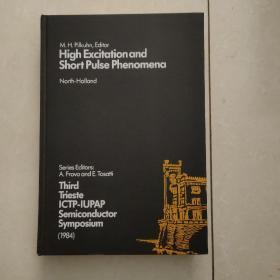 high excitation and short pulse phenomena(高激发和短脉冲现象)英文原版
