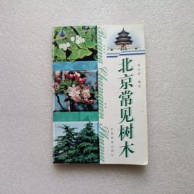 北京常见树木