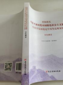 文化建设(贯彻落实习近平新时代中国特色社会主义思想在改革发展稳定中攻坚克难案例)