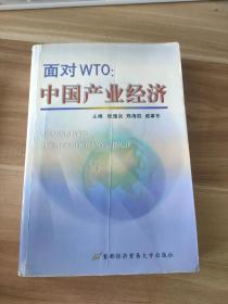 面对WTO:中国产业经济