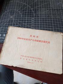贵州省1958年农业生产合作社统计报告表