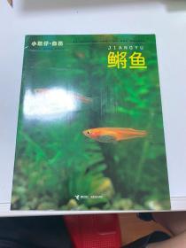 小聪明·自然 鲣鱼  【181层】